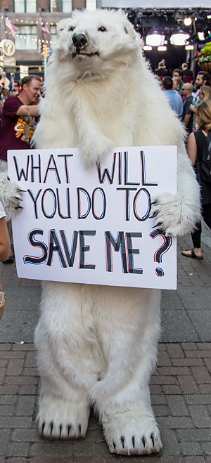 "A person in a bear costume holding a ""What will you do to save me?"" sign."