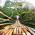 Back view of young woman on suspension wooden bamboo bridge across Loboc river in Bohol, Philippines