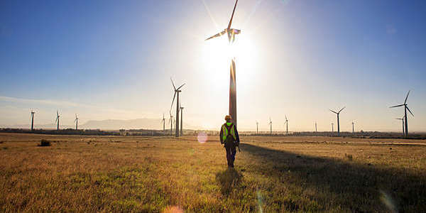 Engineer walking through a wind farm at sunset.