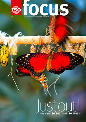 Red butterfly and caterpillars in cocoons