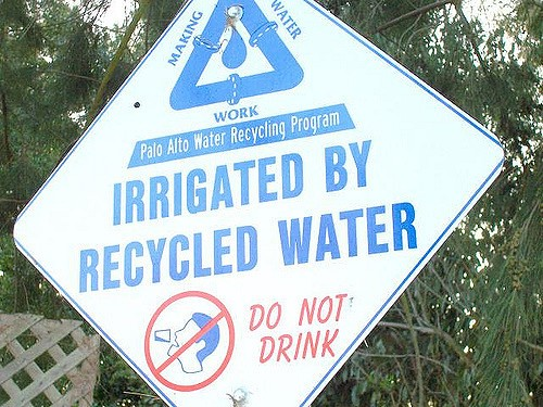 Irrigated by recycled water